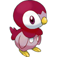 piplup17